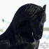 Friesian Stallion Zesus from A Bit of Class Friesians