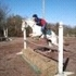 On farm lease- eng/west/trail/jumping. anyone can ride.