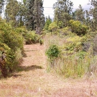 Two Hawaii Acres on Paved Road