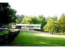 Cherokee County Mini Horse Farm