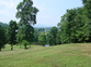 62 Acres in Wilkes County, NC for sale