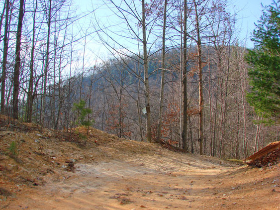 88.77 AC - Wilkes County, NC