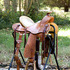 Western Saddle - Custom Made