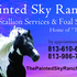 HOMOZYGOUS PAINT STALLION IN PLANT CITY FLORIDA