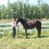 3 year old TB Minnesota bred filly