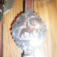 Deb Moyer Sterling Silver Show Headstall