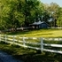 Equestrian Paradise & Well Located