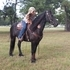 Strong-Bold-Beautiful Versital Friesian Sport Horse Mare