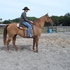 AQHA gelding, Big gentle trail gelding, 16 hands