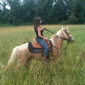 8 YEAR OLD MARE! I WILL NEGOTIATE A GOOD PRICE OR TRADE!!