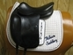 Used Amerigo Saddles for sale