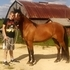 Spanish Mustang Filly with winning pedigree