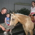 Beautiful Palomino Quarter Horse Mare