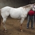 Breed your mare to a proven producer
