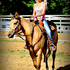 * 3yo Barrel Prospect with BEAUTY & BRAINS! *