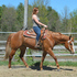 Beautiful AQHA 4H Mare Deluxe
