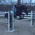Hunter Jumper Dressage lesson all around gelding