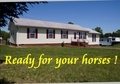 Horses & Humans - MOVE IN READY!