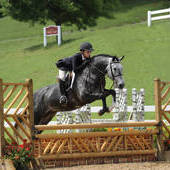 (sold) Dynamite Green Large Pony