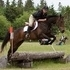 Izzy - Hunters, Jumpers & Cross Country Experience