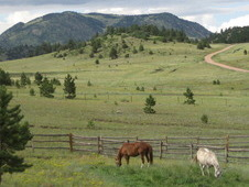 Southern Colorado Horse Ranch