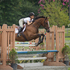11yr, 16.2H, TB - Sweet Jumper/Eventer