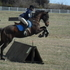 Jumper or eventer prospect