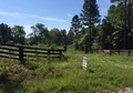 Hunting Retreat 139.92 Acres