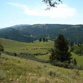 New Price! 237 Acres of Mountain Land in Bozeman