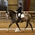 Young talented dressage horse. Results from first show :)