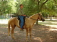 AQHA 2007 Palomino Gelding for sale in United States of America