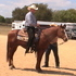 RANCH HORSE, REINER DELUX, WORKING COW, CUTTING