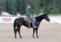 Big Black Beautiful mare by Smart Mark