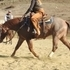 Finished Trained Red Roan Cutting Horse Novice Eligable