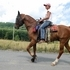 Ranson is an 11 yr old FABULOUS Tenn Walking Horse Sorrel gelding 15h and STOUT made.