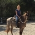 Gorgeous red roan. Loping 4d times. Quiet on trails, advanced beginner