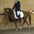 Super fancy Dressage pony