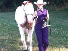 GREAT 4-H HORSE/HALTER WINNER