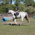 Eventer, willing to trade