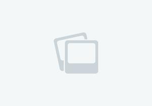 2019 Bison 4 horse side load 17' premiere living quarters trailer with super slide