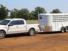 CM Stocker 16' Steel Livestock Trailer 6' Wide