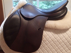 "Gorgeous 17"" Antares Saddle 2008 3N"
