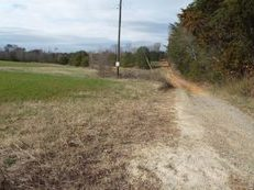 Nice Open Fields, 59 +Acres, Well , Septic