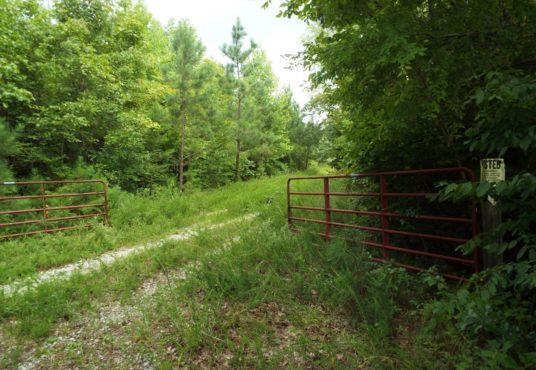 92.87 Acres. Excellent and Secluded Hunting Property