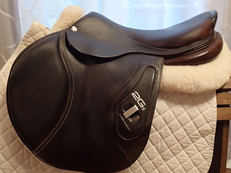 "18"" CWD 2Gs Saddle 2013 3C"