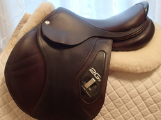 "17"" CWD 2Gs Saddle 2015 2C"