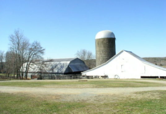 2 Homes on 375 Acres – Excellent Cattle Farm