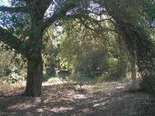 Gorgeous 110+ Acre Horse Ranch near Temecula Wine Country! Southern California WOW!