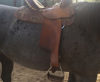 15in Alamo Gator Cross Barrel Saddle