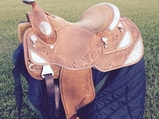 Dale Chavez Show Saddle 16